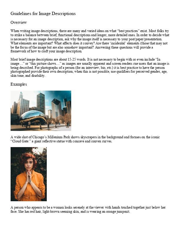 Guidelines for Image Descriptions.pdf